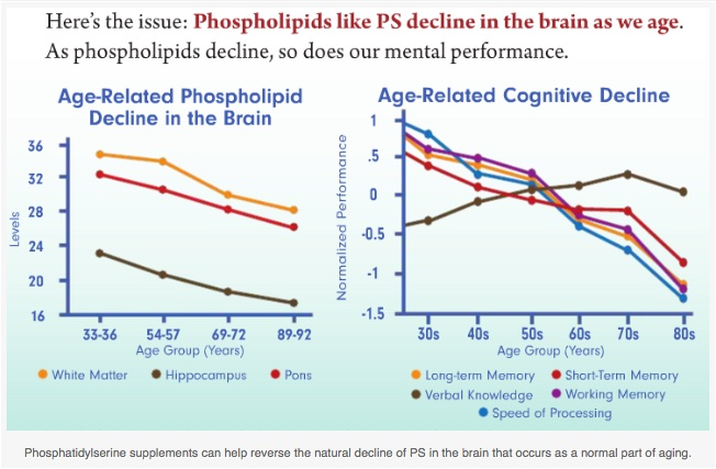 Phosphatidylserine_Benefits_for_Brain_Health